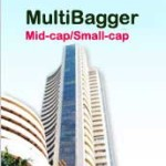 10 Multibaggers Midcap Stocks for 2017