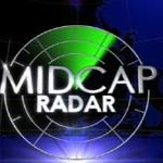 Top 20 Midcap ideas to invest